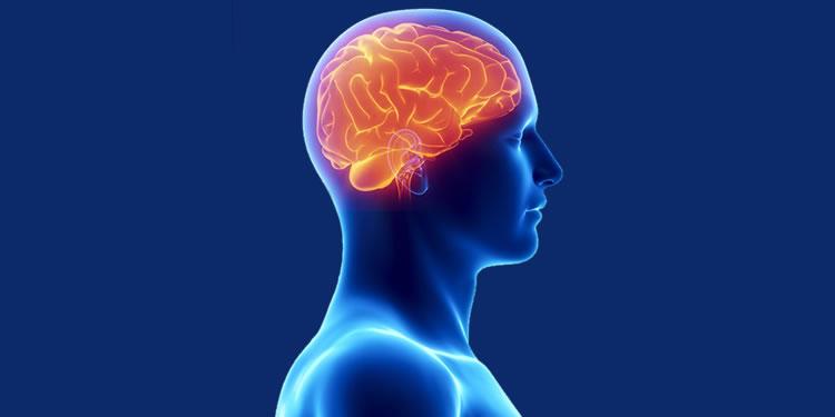 Centro de Neurociencias